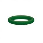 O-ring 10 x 2.2 viton